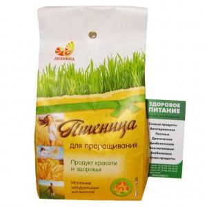 Пшеница для проращивания 500г Дивинка