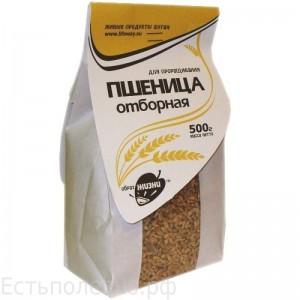 Пшеница для проращивания 500г Образ жизни