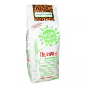 Пшеница для проращивания 500г Всем на пользу